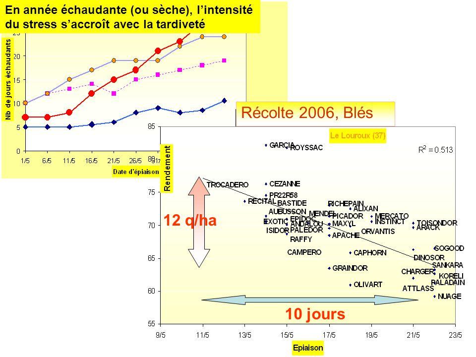 En année échaudante (ou sèche), l'intensité du stress s'accroît avec la tardiveté Récolte 2006, Blés 10 jours 12 q/ha