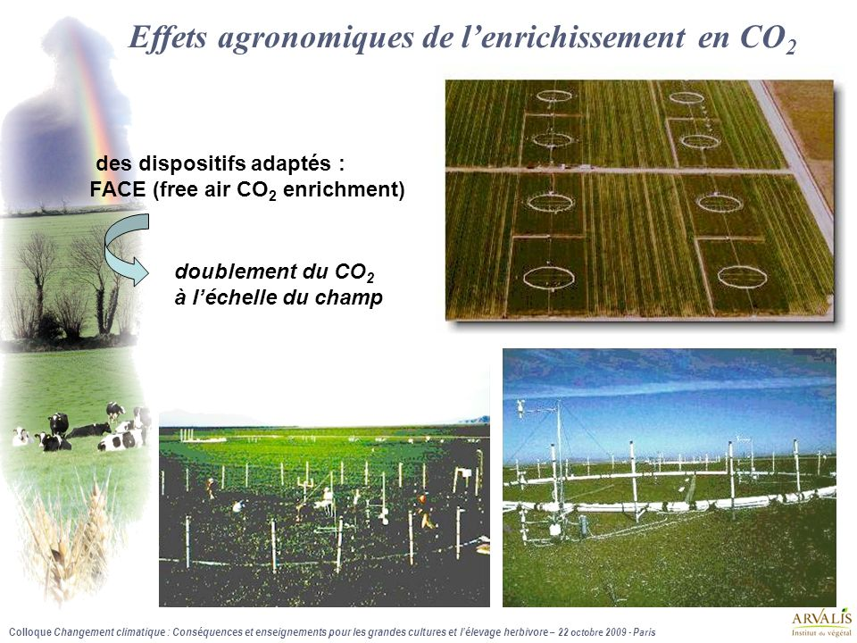 Colloque Changement climatique : Conséquences et enseignements pour les grandes cultures et l'élevage herbivore – 22 octobre 2009 - Paris Décile 1 Moyenne Décile 9 Enceintes contrôlées 1.01 1.31 1.72 (373 – 565 ppm) FACE (367 – 583 ppm) 1.05 1.14 1.2 Dispositif Impact de l'enrichissement en CO 2 sur le rendement des résultats significativement différents selon le mode d'obtention des références 1.