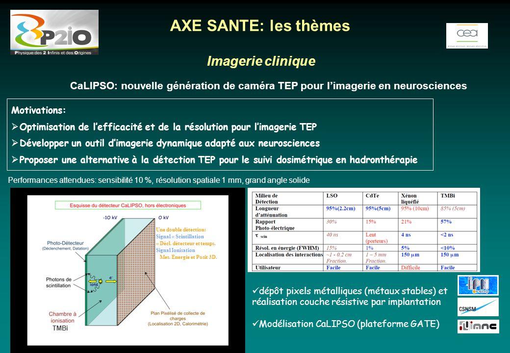 Imagerie clinique CaLIPSO: nouvelle génération de caméra TEP pour l'imagerie en neurosciences AXE SANTE: les thèmes Motivations:  Optimisation de l'e