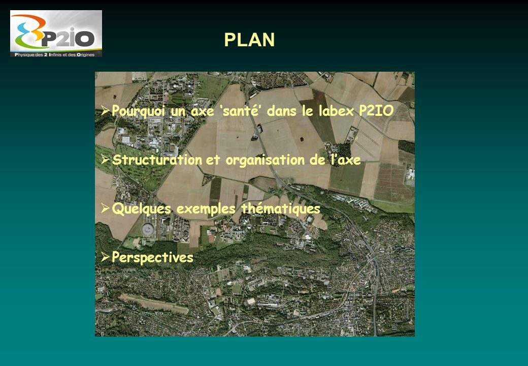 PLAN  Pourquoi un axe 'santé' dans le labex P2IO  Structuration et organisation de l'axe  Quelques exemples thématiques  Perspectives