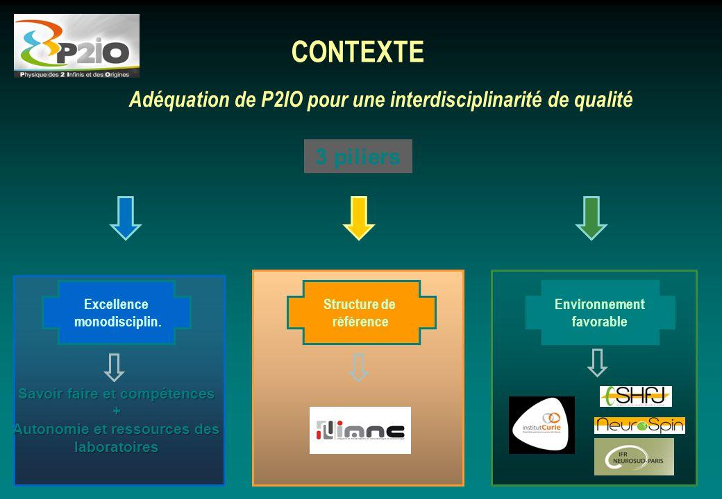 Adéquation de P2IO pour une interdisciplinarité de qualité CONTEXTE 3 piliers Environnement favorable Excellence monodisciplin. Structure de référence