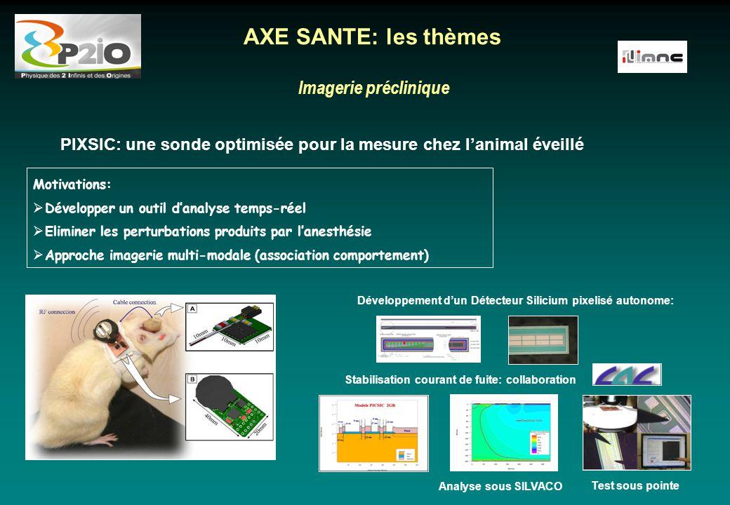 Imagerie préclinique AXE SANTE: les thèmes Motivations:  Développer un outil d'analyse temps-réel  Eliminer les perturbations produits par l'anesthé