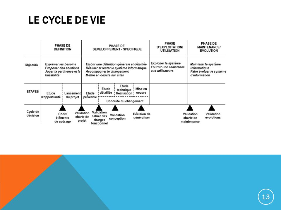 LE CYCLE DE VIE 13