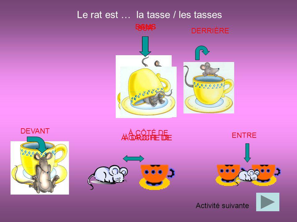 DANS SUR SOUS DERRIÈRE DEVANT À CÔTÉ DE ENTRE Activité suivante Le rat est … la tasse / les tasses À GAUCHE DEÀ DROITE DE