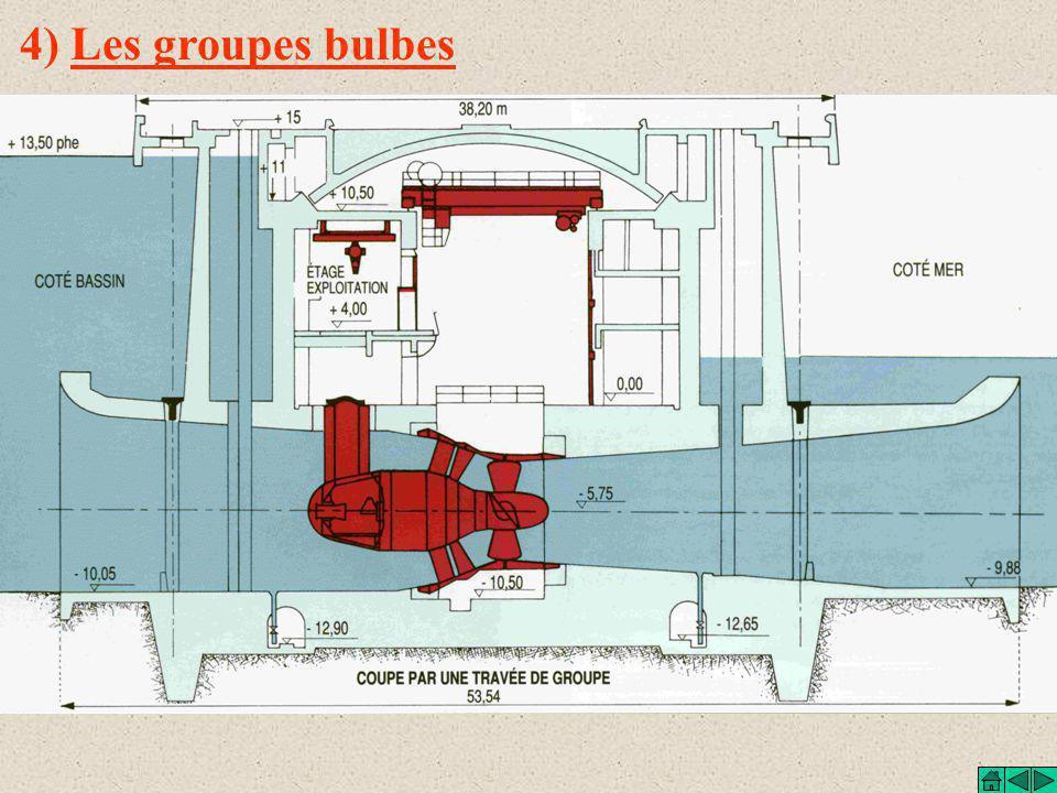 4) Les groupes bulbes