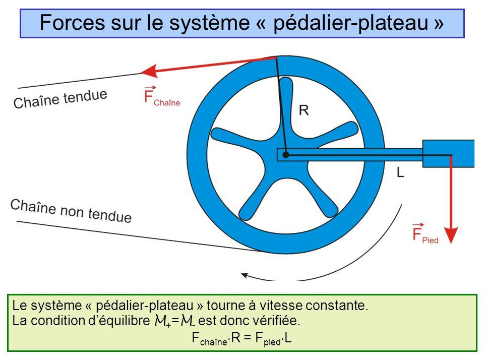 Le système « pédalier-plateau » tourne à vitesse constante. La condition d'équilibre M + = M - est donc vérifiée. F chaîne  R = F pied  L Forces sur