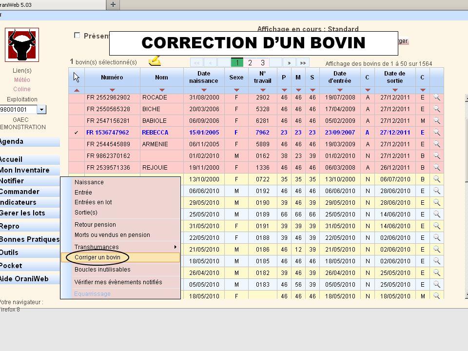 CORRECTION D'UN BOVIN