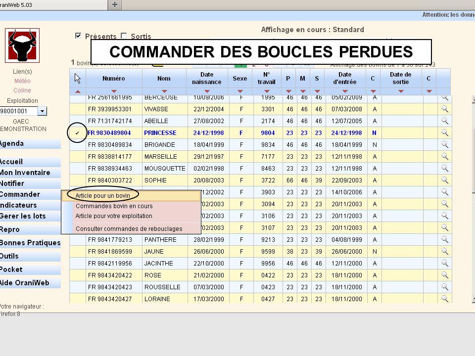 COMMANDER DES BOUCLES PERDUES