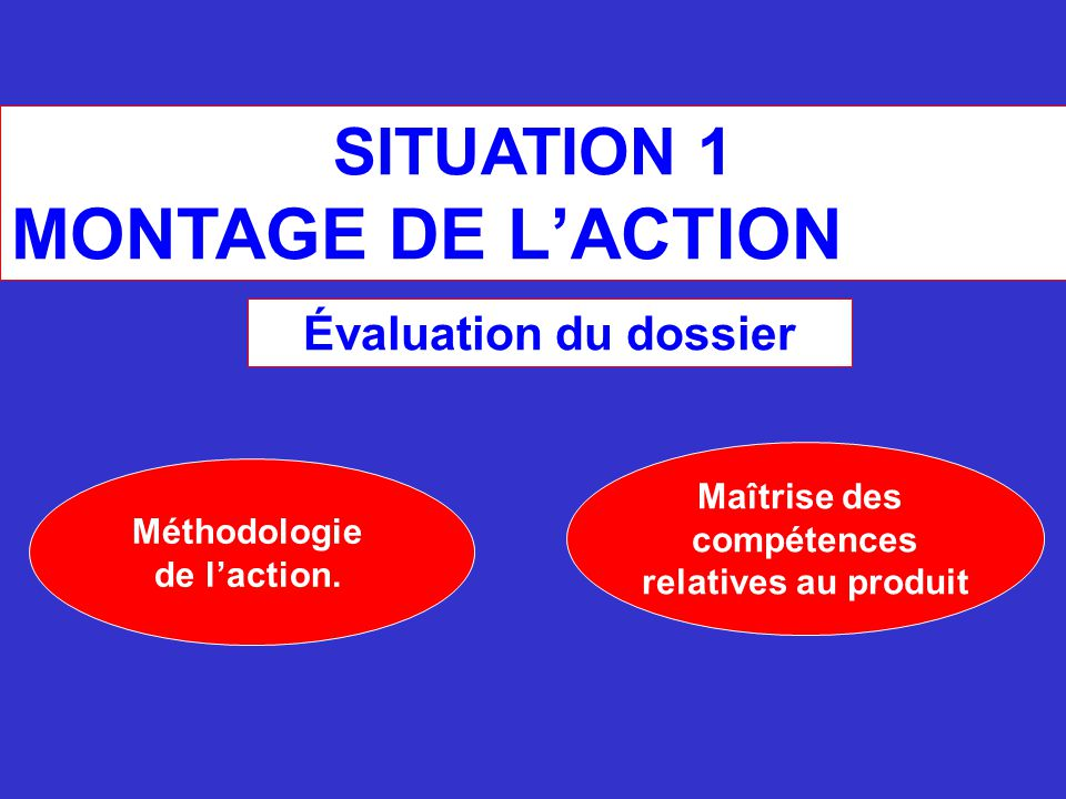 SITUATION 1 MONTAGE DE L'ACTION Méthodologie de l'action.