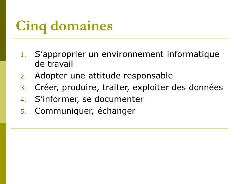 Cinq domaines 1. S'approprier un environnement informatique de travail 2.