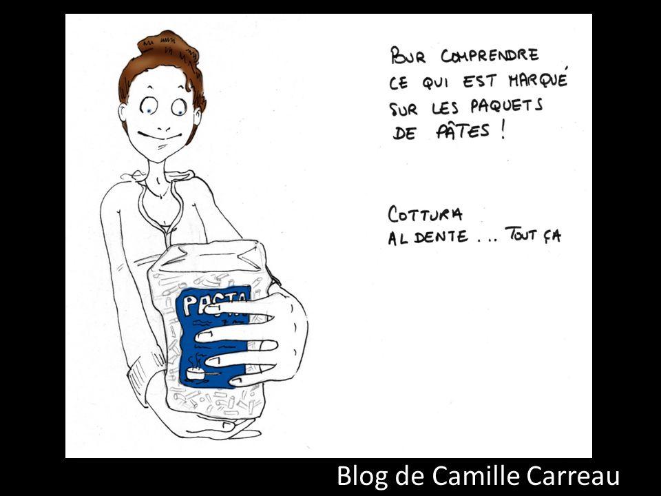 Blog de Camille Carreau