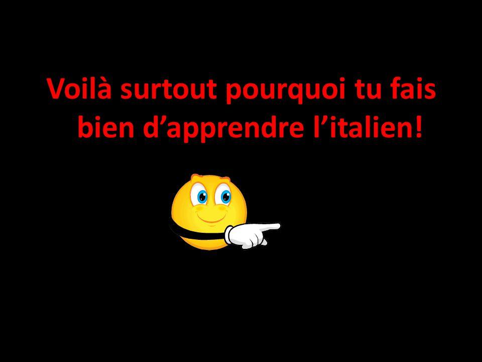 Voilà surtout pourquoi tu fais bien d'apprendre l'italien!