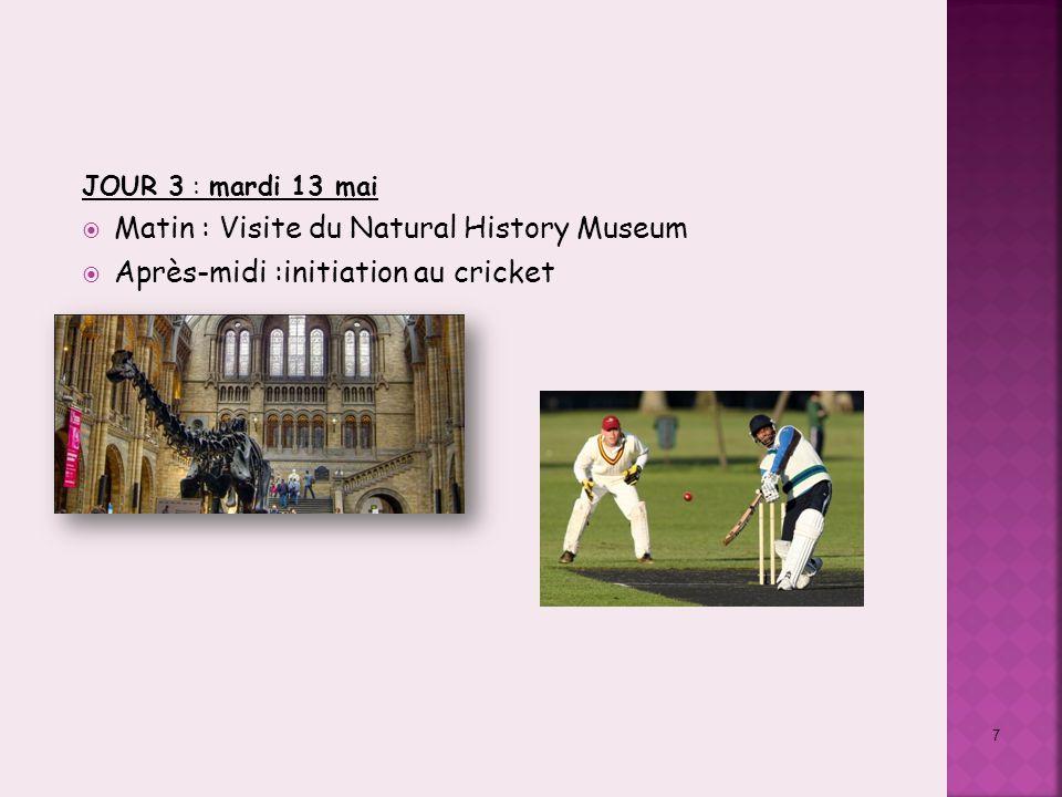 7 JOUR 3 : mardi 13 mai  Matin : Visite du Natural History Museum  Après-midi :initiation au cricket