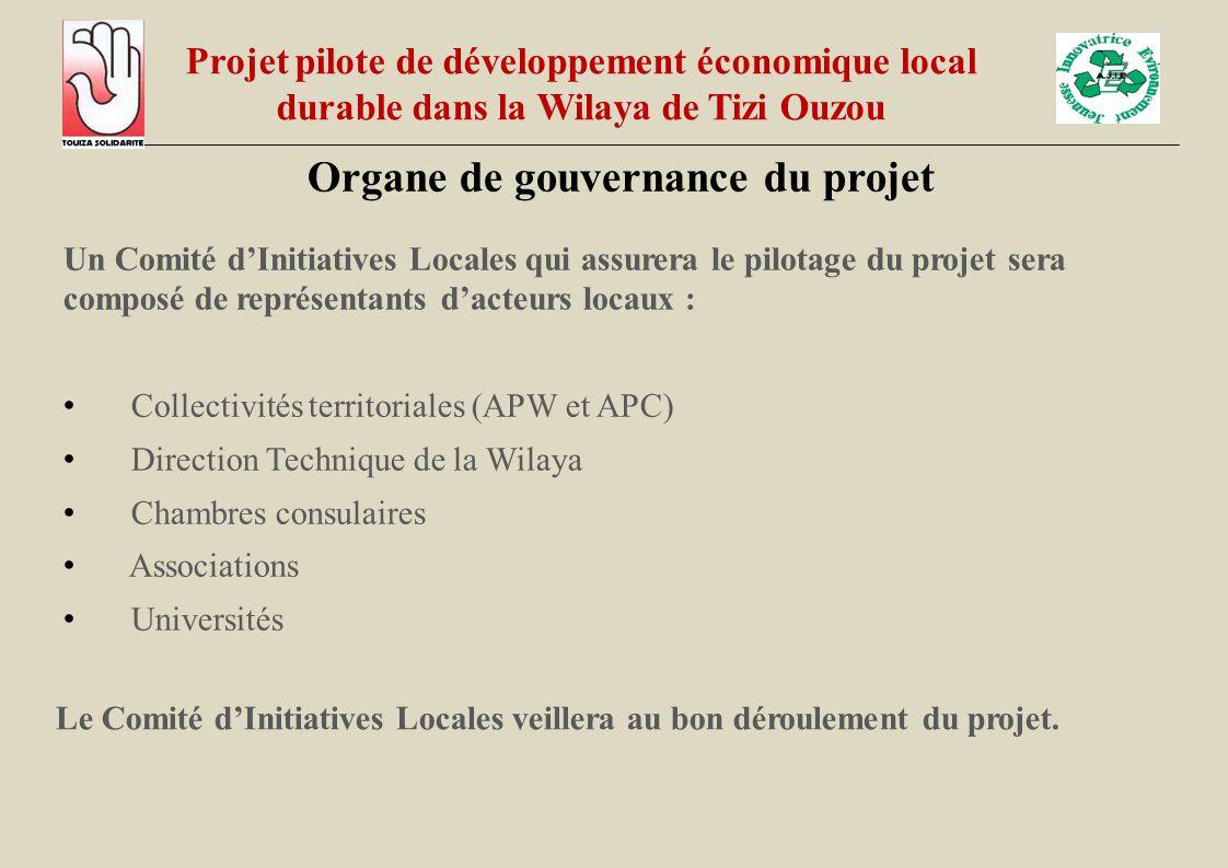 Un Comité d'Initiatives Locales qui assurera le pilotage du projet sera composé de représentants d'acteurs locaux : Collectivités territoriales (APW e