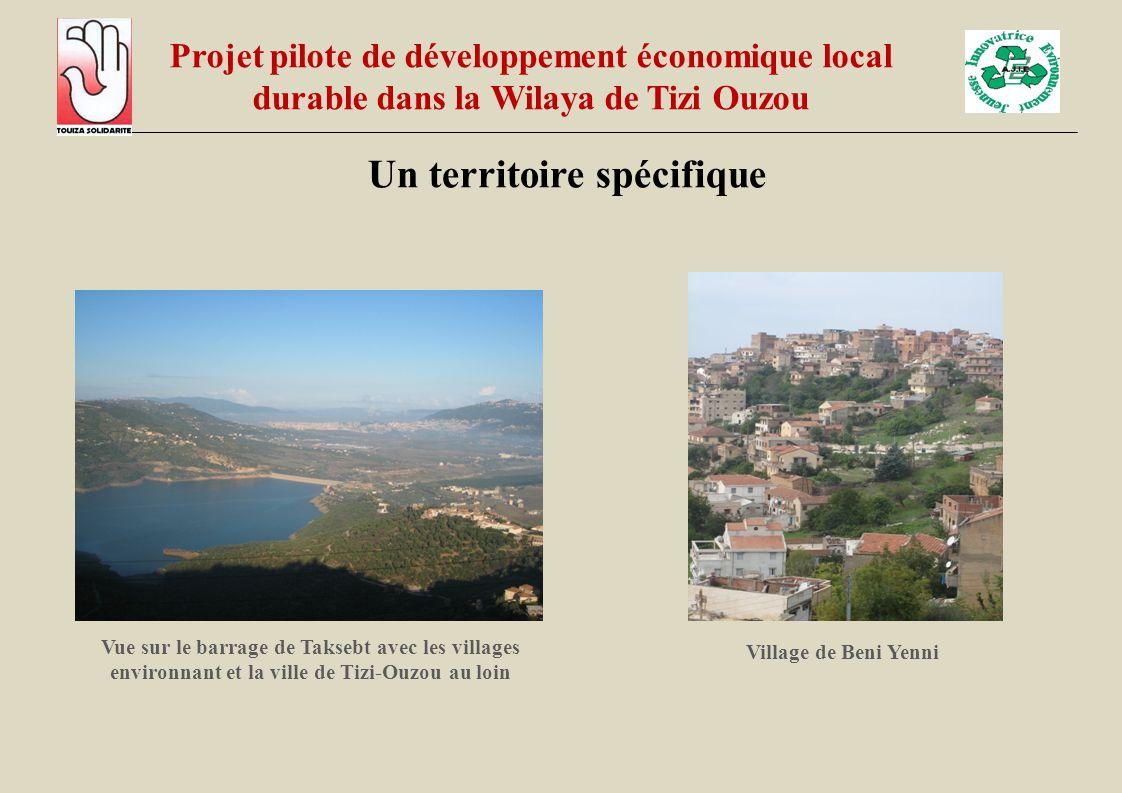Un territoire spécifique Vue sur le barrage de Taksebt avec les villages environnant et la ville de Tizi-Ouzou au loin Village de Beni Yenni Projet pi