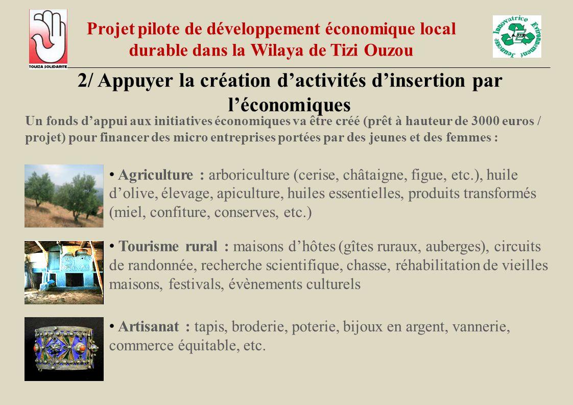 2/ Appuyer la création d'activités d'insertion par l'économiques Un fonds d'appui aux initiatives économiques va être créé (prêt à hauteur de 3000 eur