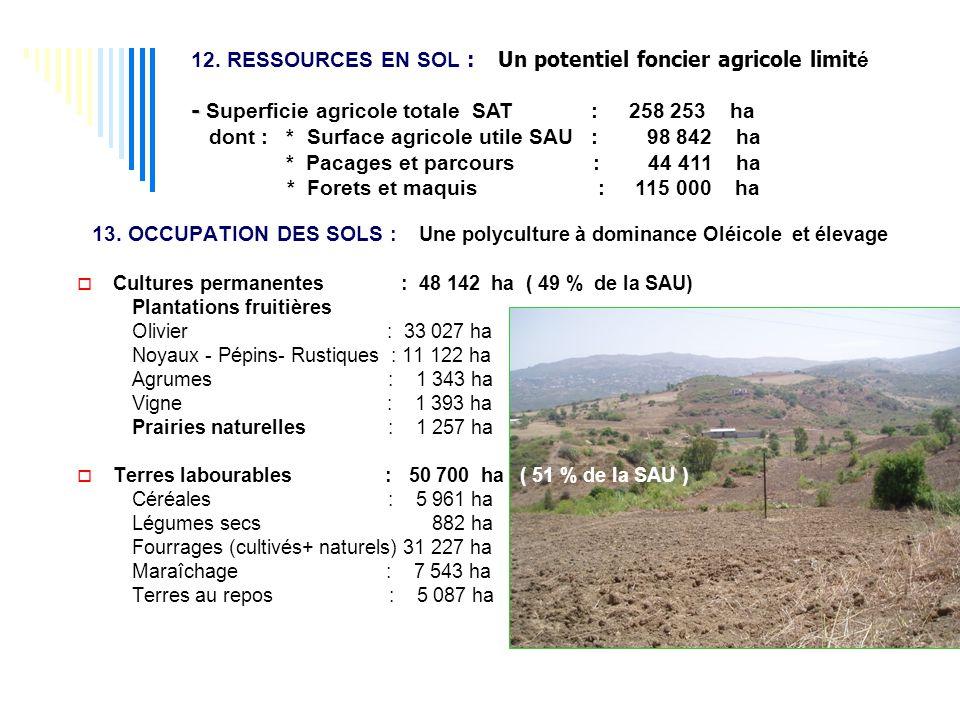 12. RESSOURCES EN SOL : Un potentiel foncier agricole limit é - - Superficie agricole totale SAT : 258 253 ha dont : * Surface agricole utile SAU : 98