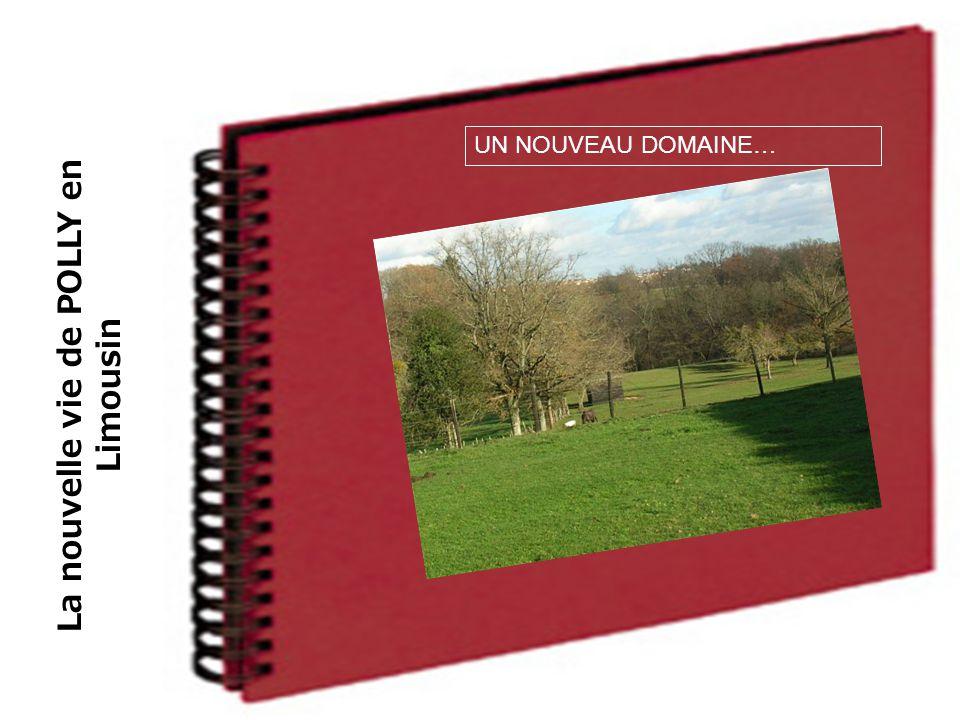 La nouvelle vie de POLLY en Limousin UN NOUVEAU DOMAINE…