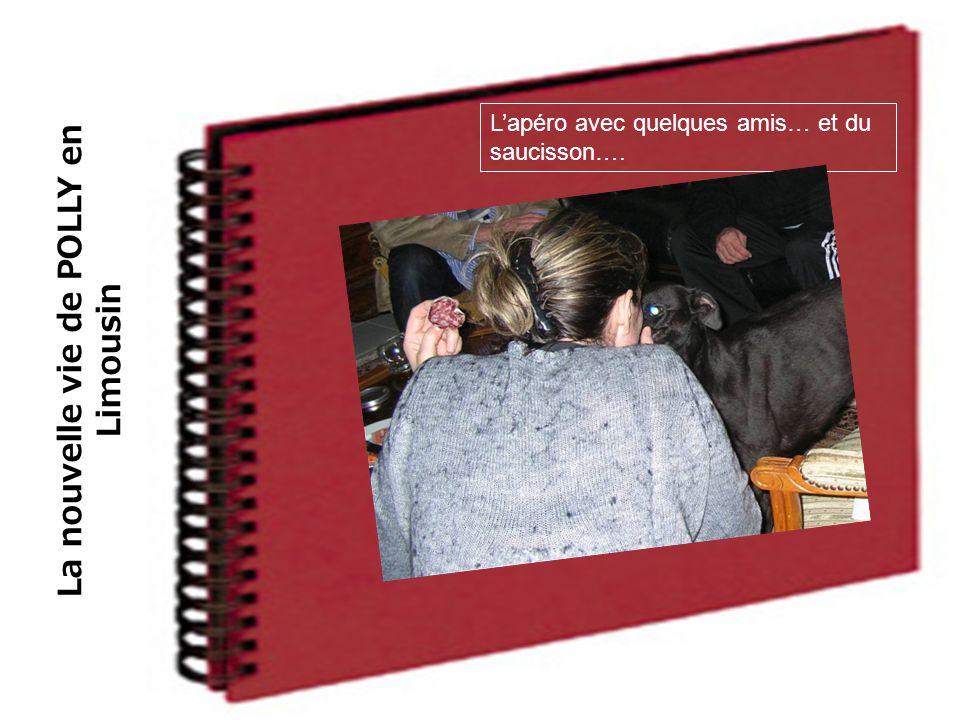La nouvelle vie de POLLY en Limousin L'apéro avec quelques amis… et du saucisson….