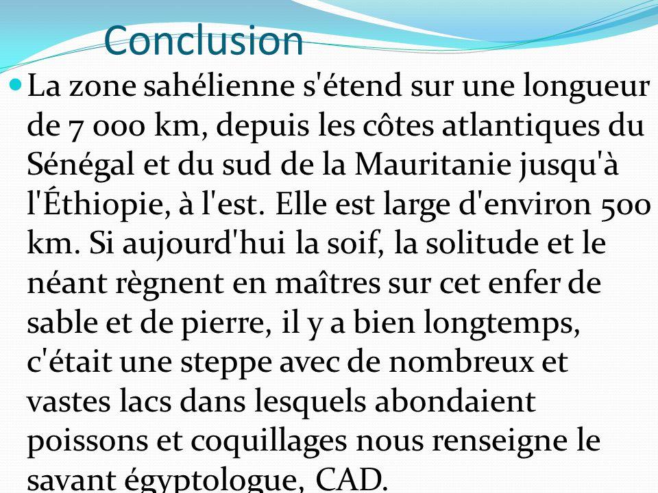 Conclusion La zone sahélienne s'étend sur une longueur de 7 000 km, depuis les côtes atlantiques du Sénégal et du sud de la Mauritanie jusqu'à l'Éthio