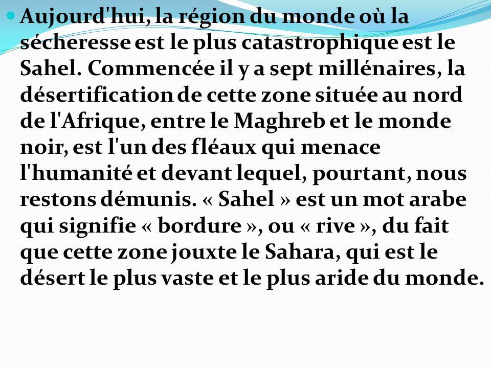 Aujourd'hui, la région du monde où la sécheresse est le plus catastrophique est le Sahel. Commencée il y a sept millénaires, la désertification de cet