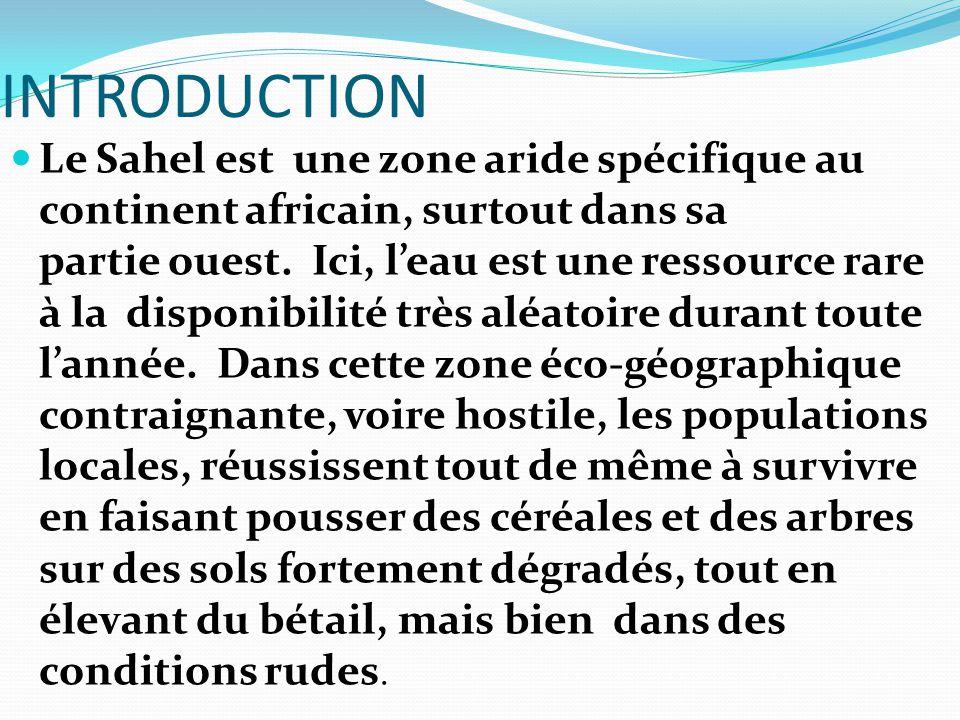 INTRODUCTION Le Sahel est une zone aride spécifique au continent africain, surtout dans sa partie ouest. Ici, l'eau est une ressource rare à la dispon