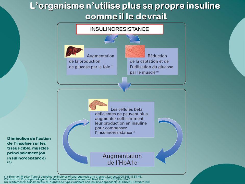 L'organisme n'utilise plus sa propre insuline comme il le devrait Diminution de l'action de l'insuline sur les tissus cible, muscles principalement (o