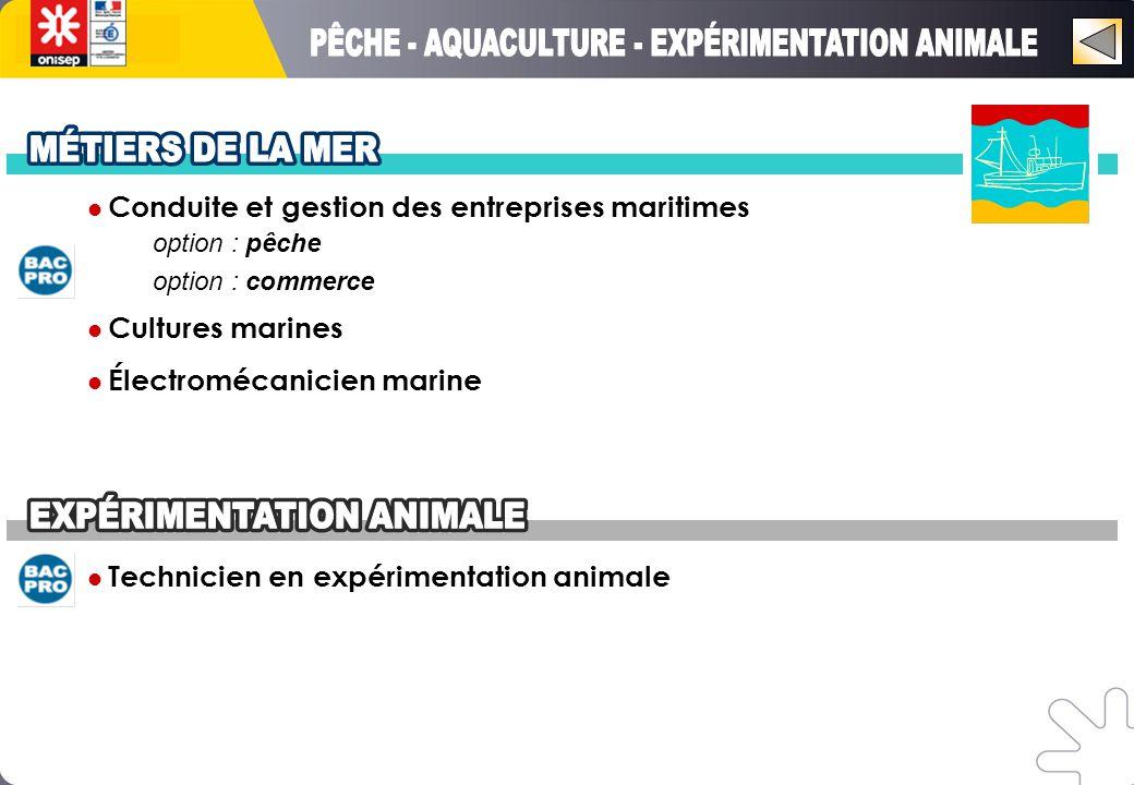 Conduite et gestion des entreprises maritimes option : pêche option : commerce Cultures marines Électromécanicien marine Technicien en expérimentation animale