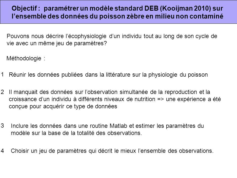Objectif : paramétrer un modèle standard DEB (Kooijman 2010) sur l'ensemble des données du poisson zèbre en milieu non contaminé Pouvons nous décrire