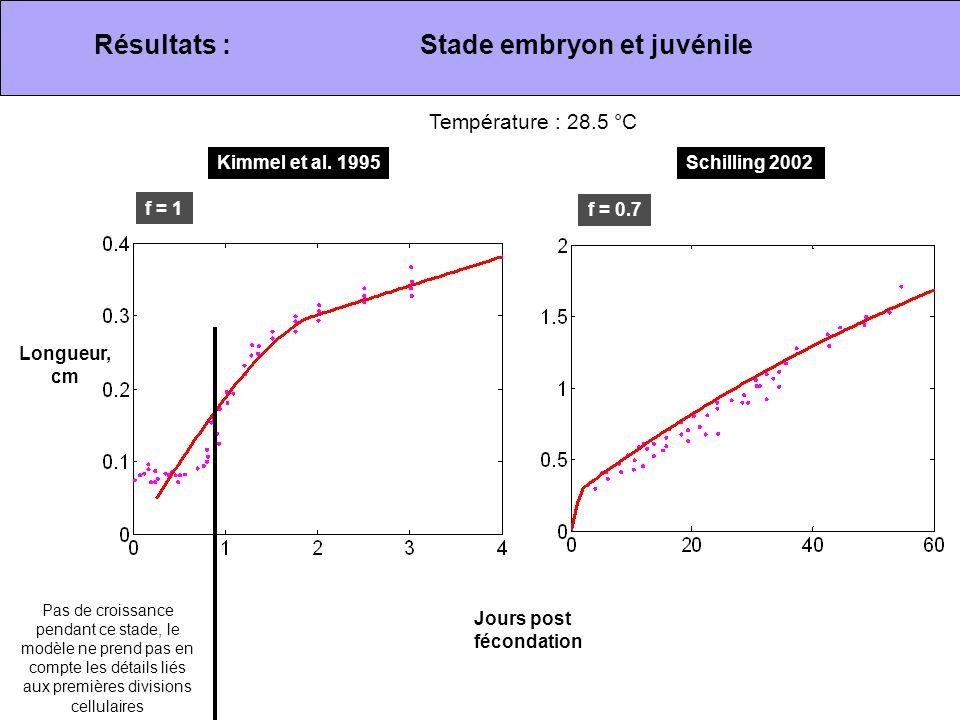 Résultats :Stade embryon et juvénile Kimmel et al. 1995Schilling 2002 Température : 28.5 °C Jours post fécondation Pas de croissance pendant ce stade,