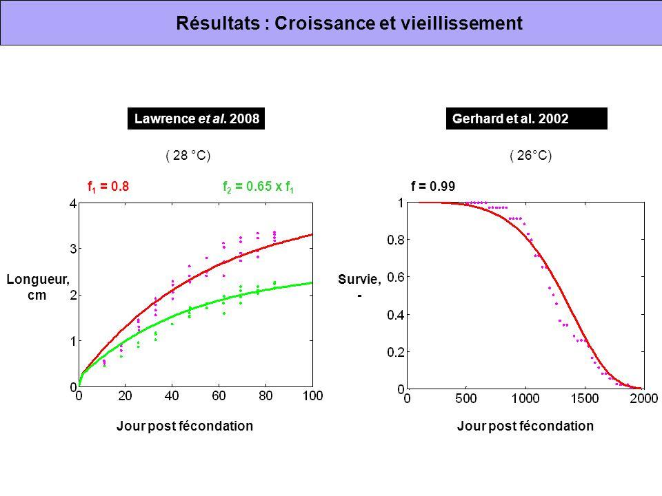 Résultats : Croissance et vieillissement Lawrence et al. 2008 ( 28 °C) Gerhard et al. 2002 ( 26°C) f 1 = 0.8f 2 = 0.65 x f 1 Jour post fécondation Lon