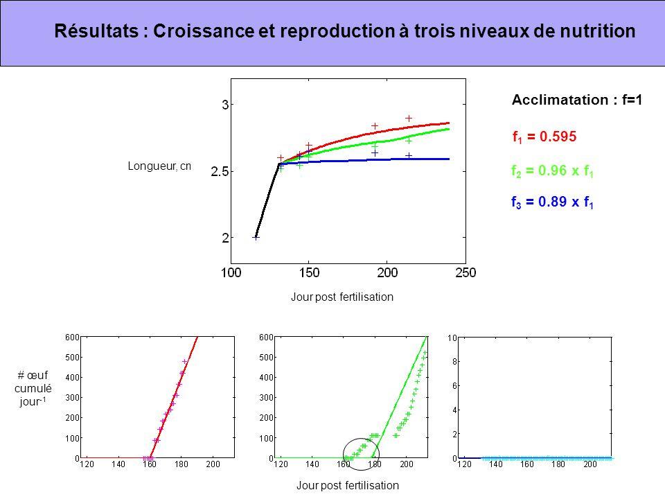 Jour post fertilisation # œuf cumulé jour -1 Longueur, cm f 1 = 0.595 f 2 = 0.96 x f 1 f 3 = 0.89 x f 1 Acclimatation : f=1 Résultats : Croissance et