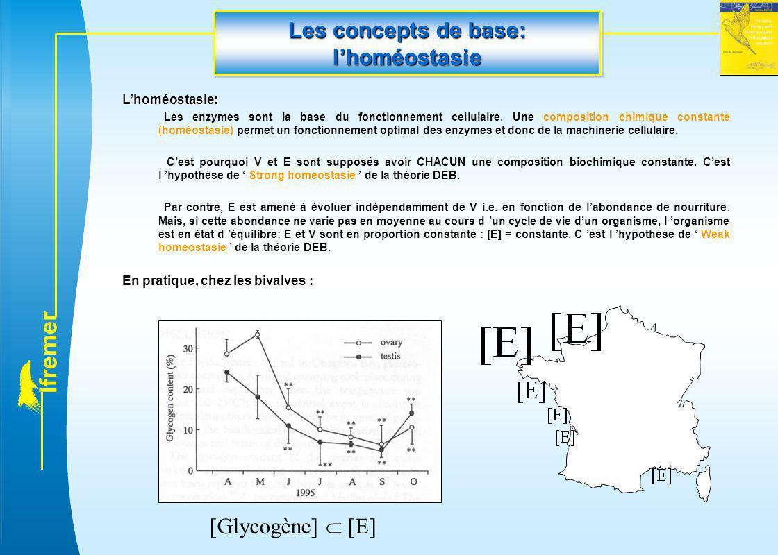 l f r e m e r Les concepts de base: l'homéostasie L'homéostasie: Les enzymes sont la base du fonctionnement cellulaire. Une composition chimique const