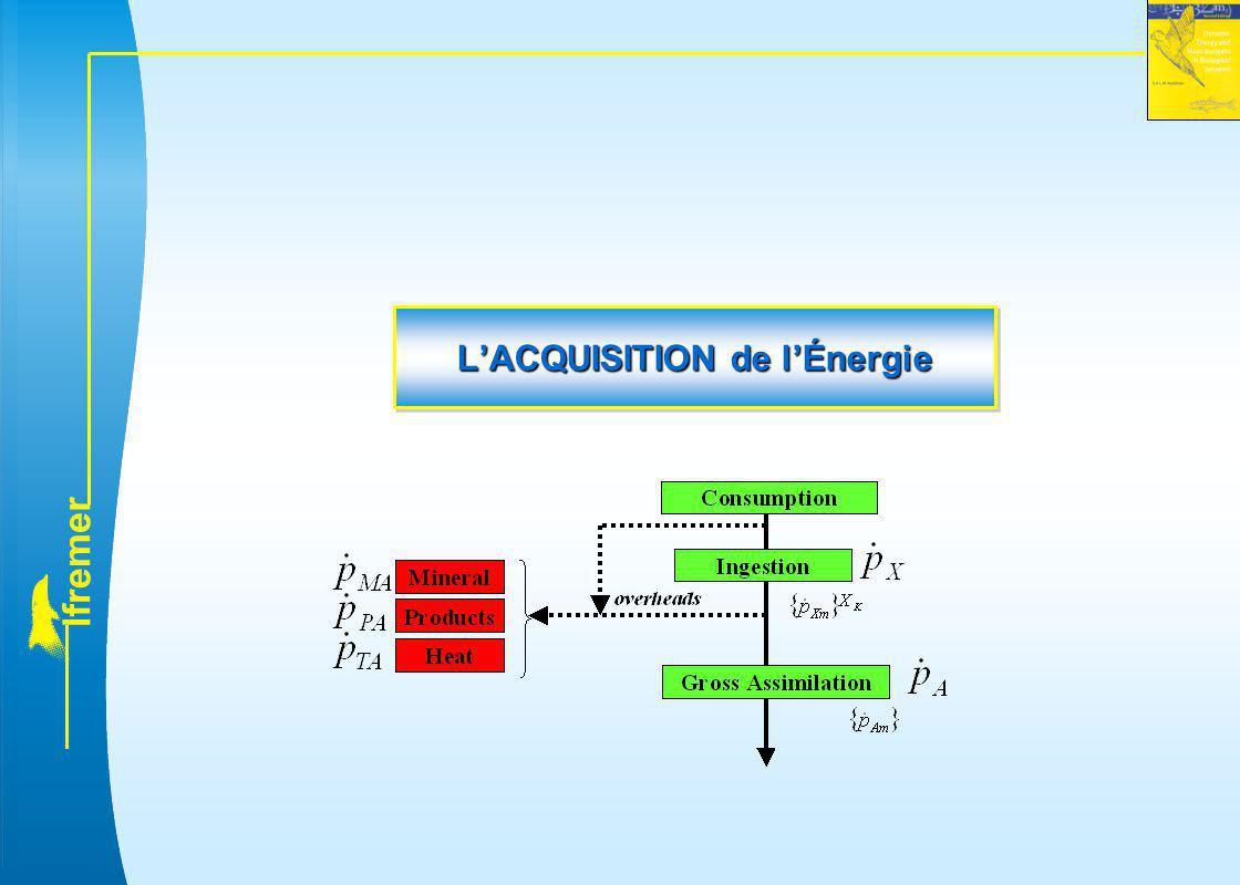 l f r e m e r L'ACQUISITION de l'Énergie