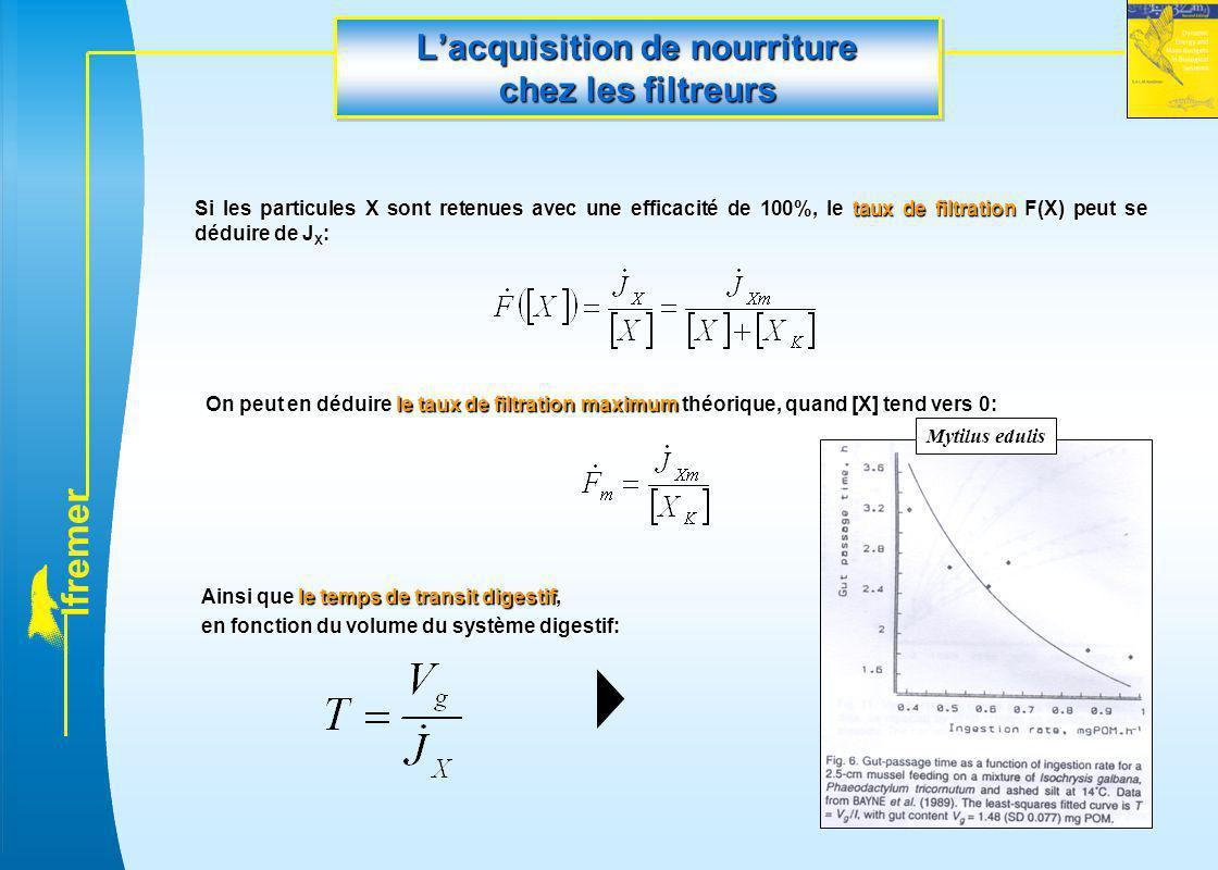 l f r e m e r L'acquisition de nourriture chez les filtreurs Si les particules X sont retenues avec une efficacité de 100%, le taux de filtration F(X)