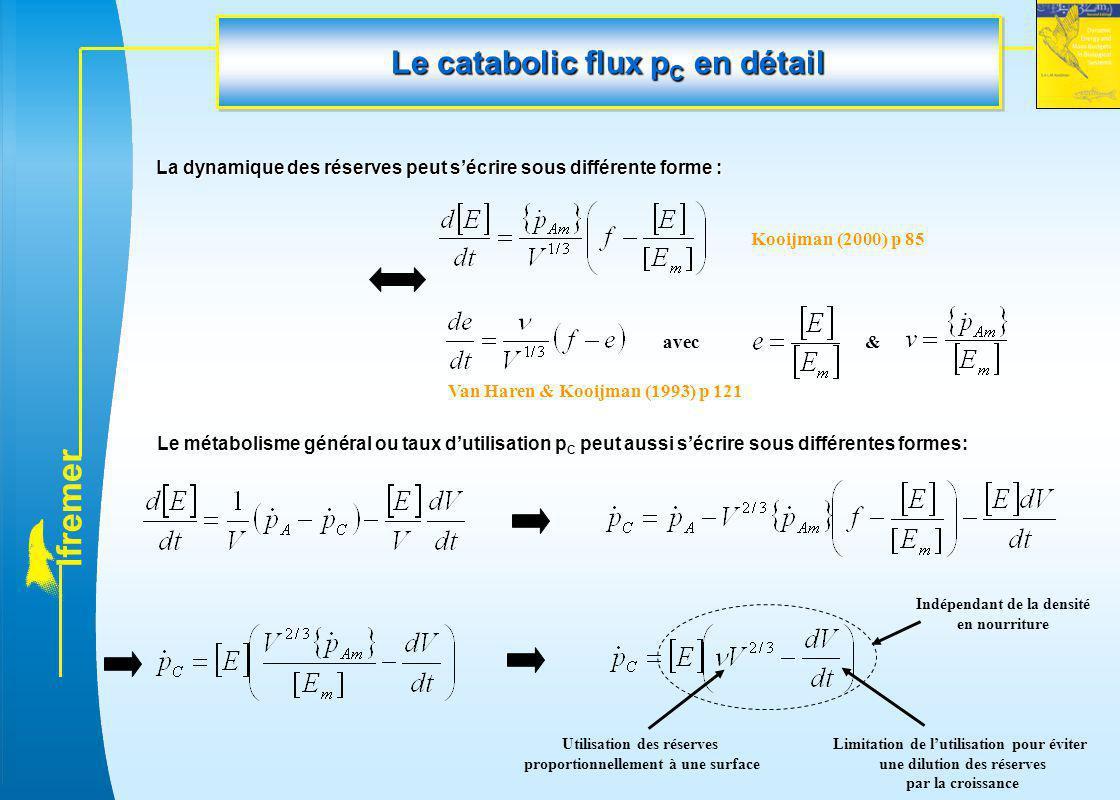 l f r e m e r Le catabolic flux p C en détail La dynamique des réserves peut s'écrire sous différente forme : avec& Le métabolisme général ou taux d'u