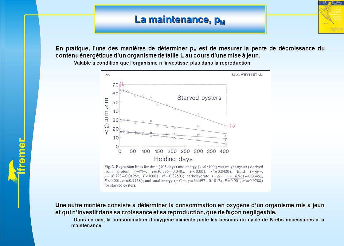 l f r e m e r La maintenance, p M En pratique, l'une des manières de déterminer p M est de mesurer la pente de décroissance du contenu énergétique d'u