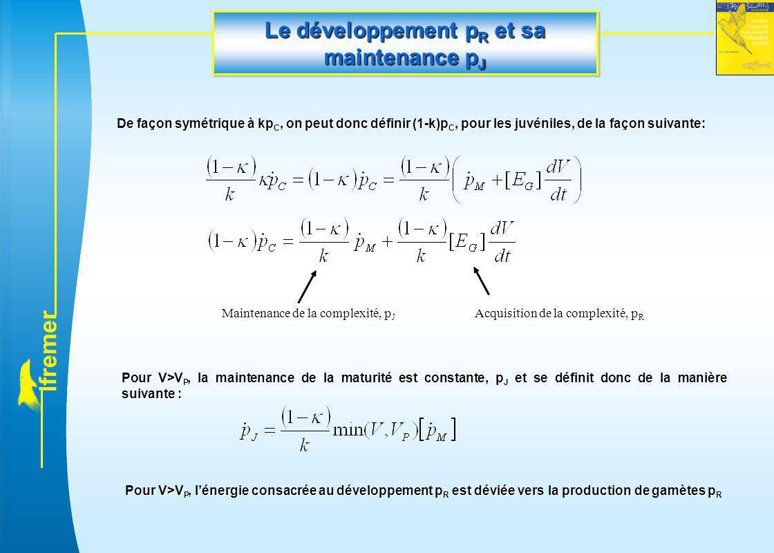 l f r e m e r Le développement p R et sa maintenance p J De façon symétrique à kp C, on peut donc définir (1-k)p C, pour les juvéniles, de la façon su