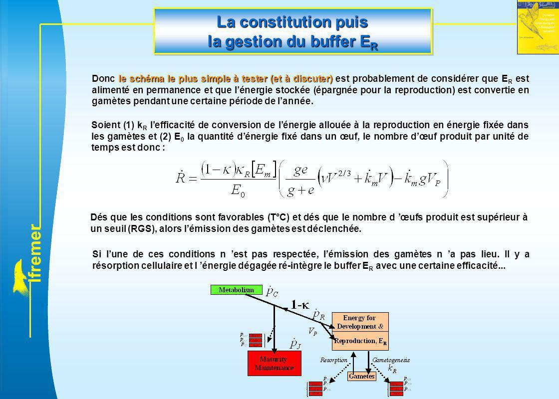 l f r e m e r La constitution puis la gestion du buffer E R Soient (1) k R l'efficacité de conversion de l'énergie allouée à la reproduction en énergi