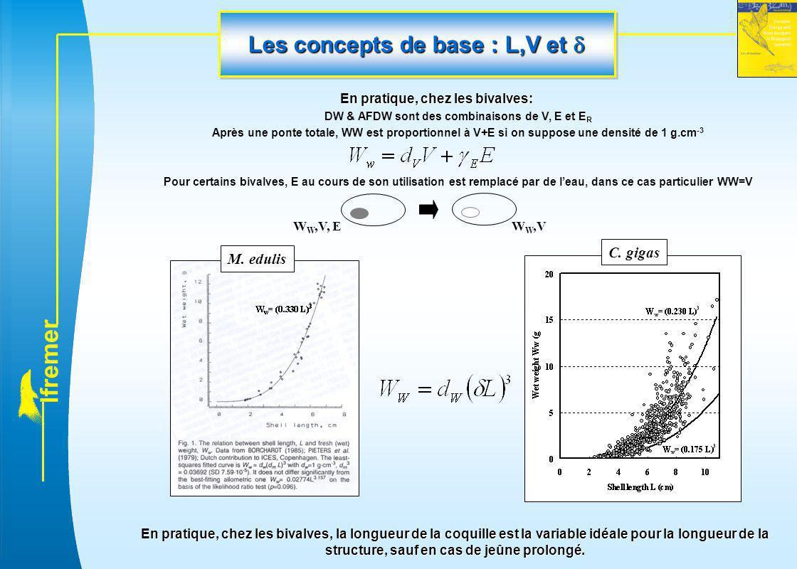 l f r e m e r Les concepts de base : L,V et  En pratique, chez les bivalves: DW & AFDW sont des combinaisons de V, E et E R Après une ponte totale, W