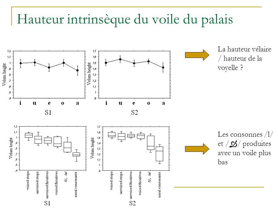 Hauteur intrinsèque du voile du palais La hauteur vélaire / hauteur de la voyelle .