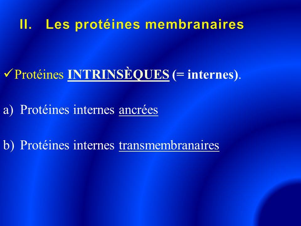 Protéines INTRINSÈQUES (= internes). a)Protéines internes ancrées b)Protéines internes transmembranaires