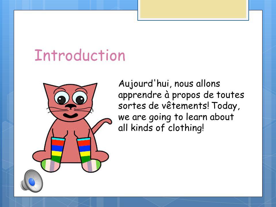 Introduction Aujourd hui, nous allons apprendre à propos de toutes sortes de vêtements.