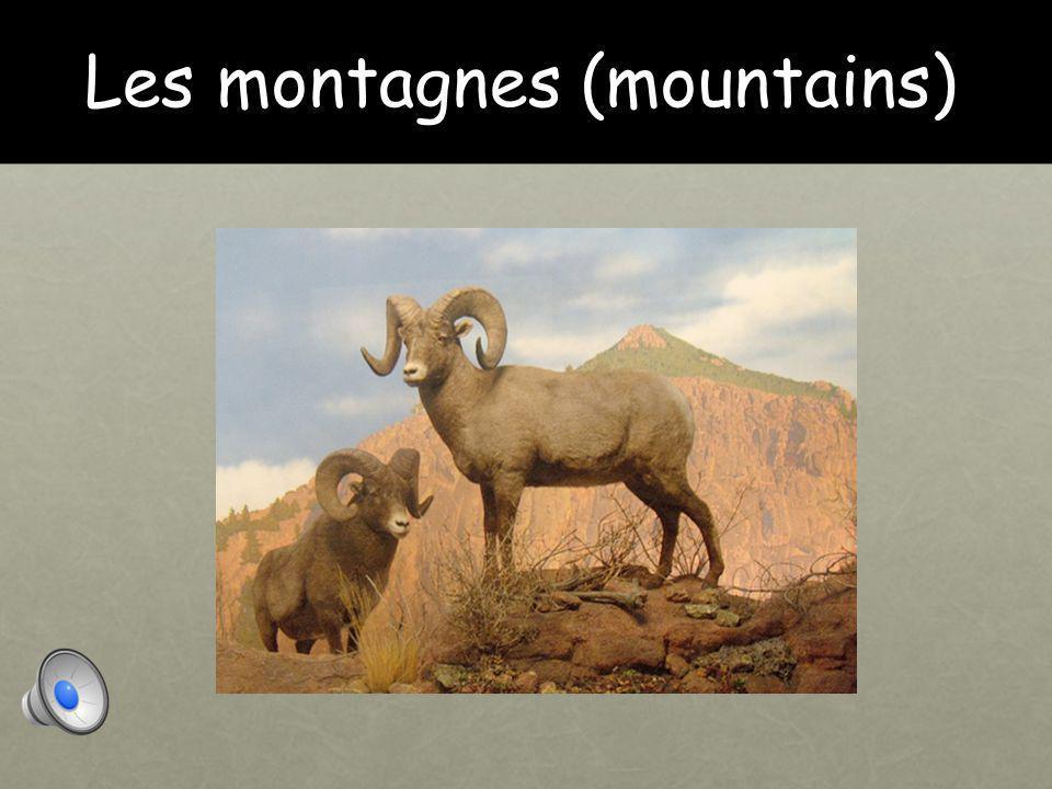 Les montagnes (mountains)