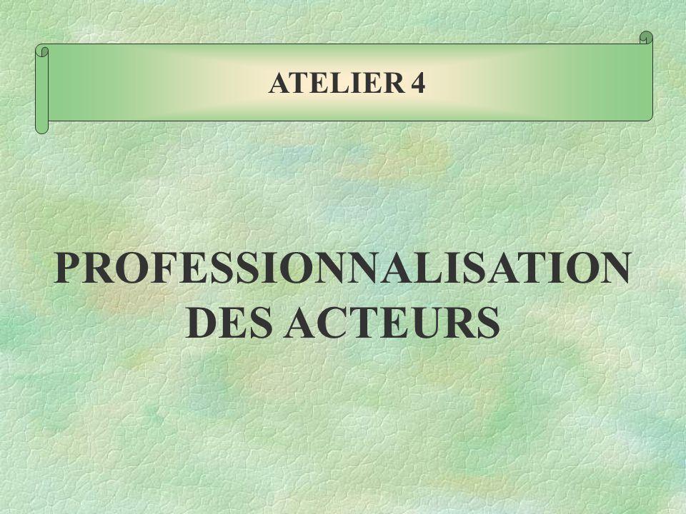 PROFESSIONNALISATION DES ACTEURS ATELIER 4