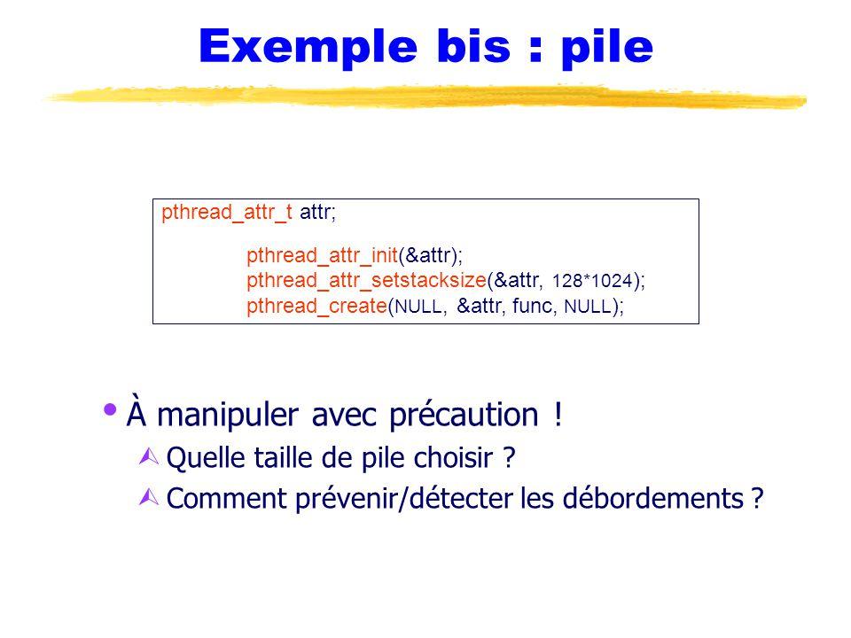 Exemple bis : pile  À manipuler avec précaution .