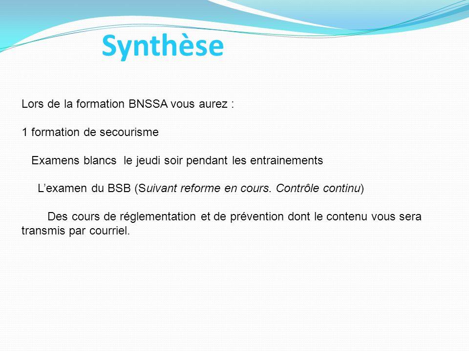 Synthèse Lors de la formation BNSSA vous aurez : 1 formation de secourisme Examens blancs le jeudi soir pendant les entrainements L'examen du BSB (Sui