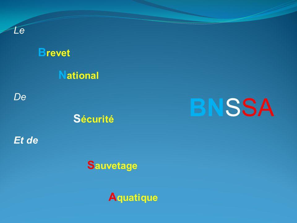 Le B revet N ational De S écurité Et de S auvetage A quatique BNSSA