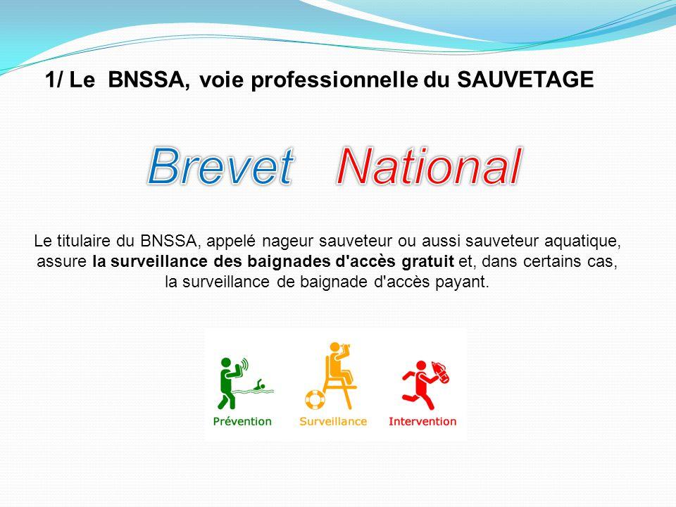 1/ Le BNSSA, voie professionnelle du SAUVETAGE Le titulaire du BNSSA, appelé nageur sauveteur ou aussi sauveteur aquatique, assure la surveillance des