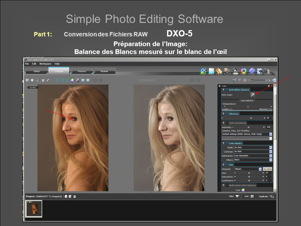 Simple Photo Editing Software Correction des Couleurs Locales Part 1:Conversion des Fichiers RAW DXO-5